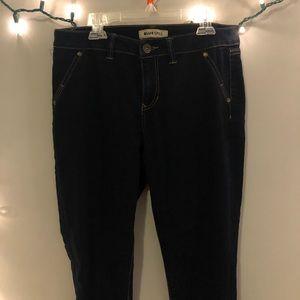 Blue Spice Dark Wash Jeans